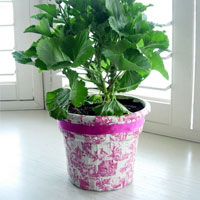 How-To Transform and Decorate a Flower Pot