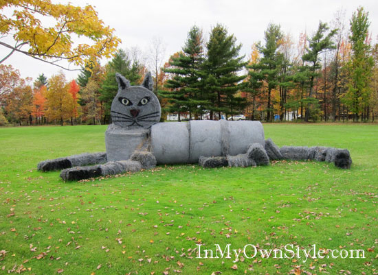 Hay Bale Art - Cat