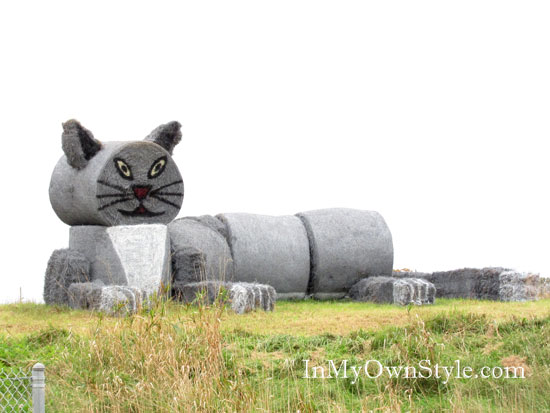 Gray cat made of hay bales and rolls