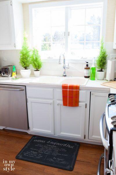 How Not To Kill Houseplants