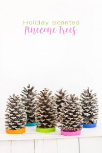 Holiday gift ideas to make using pinecones and essential oils