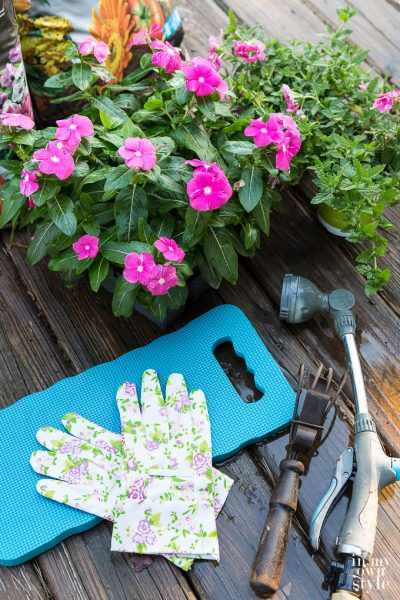 Planting Annuals… My Tried and True