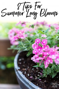 Flower gardening tips that will help flowers bloom all summer long.