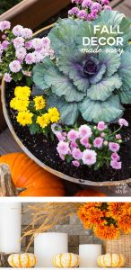 Easy-fall-decorating-ideas-using-natural-elements. Plus lots of affordable autumn decorating ideas from DIY bloggers.
