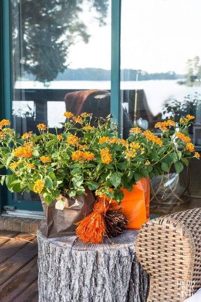 Fabulous Fall Home Tours