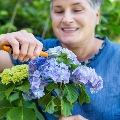 Diane of In My Own Style cutting hydrangeas for flower arranging