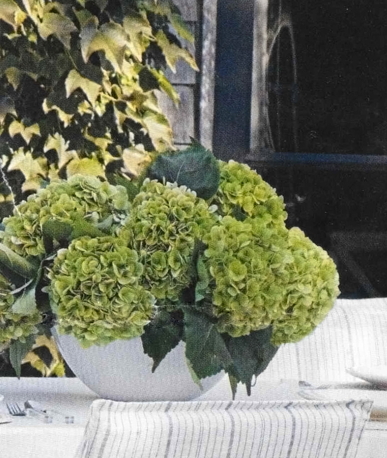 large white bowl vase with light green hydrangeas on outdoor table