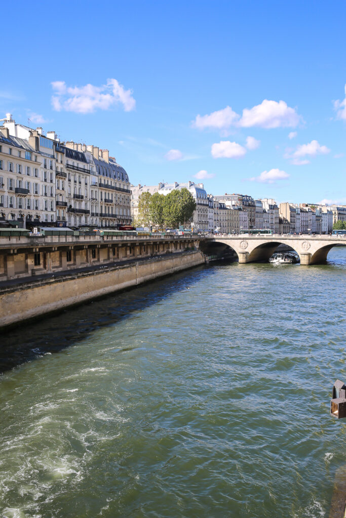 The Seine in Paris viewed from a Bridge near Notre Dame Cathedral in Paris