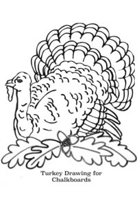 Free-Printable-Turkey-Line-Drawing